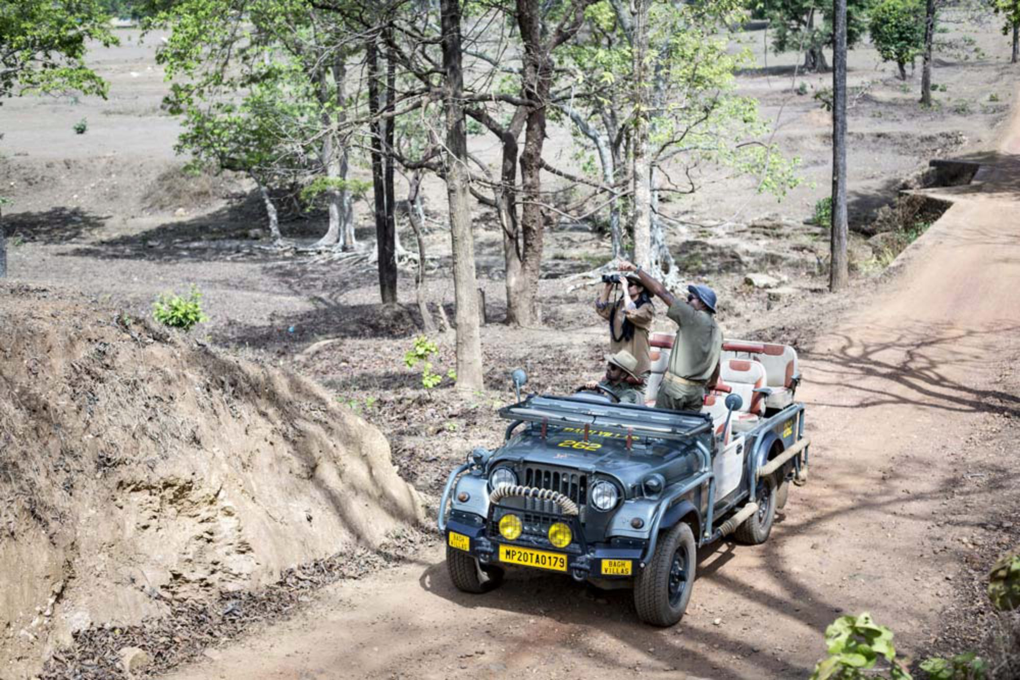 Kanha Tiger Reserve Safari Booking